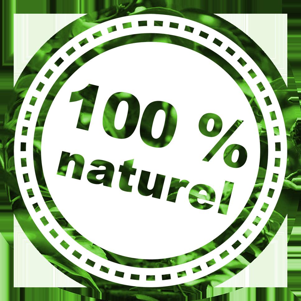 logo cent pour cent naturel